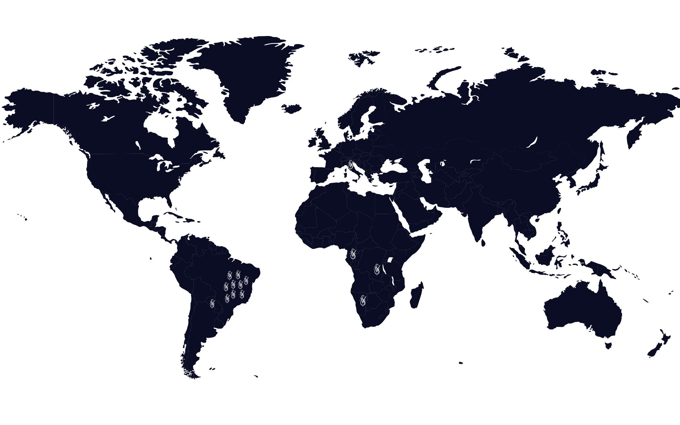 Presença Vicentina no Mundo